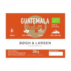 Pascucci Guatemala...